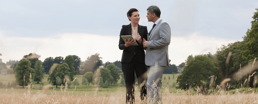Business people in a field talking